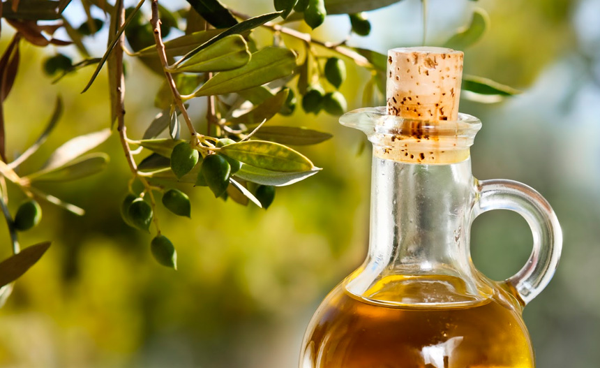 El fruto del olivo