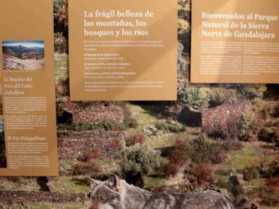 Cogolludo, puerta abierta al Parque Natural de la Sierra Norte de Guadalajara